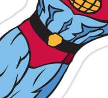 Captain Planet Sticker