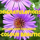 Banner for Bi-Colour Beauties by teresa731