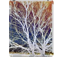 Wintry Mix - Colorful Sky & Shocking White Branches iPad Case/Skin