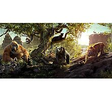 THE JUNGLE BOOK 2016 Photographic Print