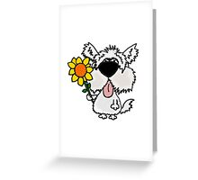 Cool Funny White Shaggy Dog with Flower Greeting Card