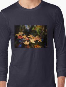 Fallen Leaves On Pond Long Sleeve T-Shirt