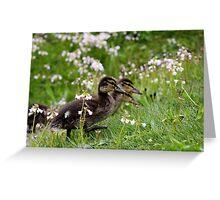 Flower Ducklings Greeting Card