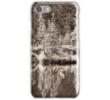 Hiawatha Beach - sepia iPhone Case/Skin