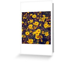 Yellow flower patch Greeting Card