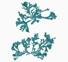 Blue Seaweed Plant Art  Baby Tee