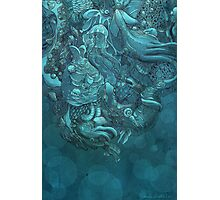 Aquatic Life 2 Photographic Print