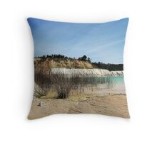 70±  Million Years Time Line© Throw Pillow
