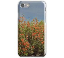 Orange Desert Wildflowers In Full Bloom iPhone Case/Skin
