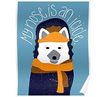 Arctic Fox by Darah King Poster