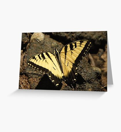 Butterfly the Vamp Slayer Greeting Card