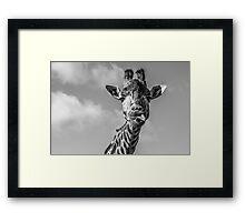 Selfi  Framed Print