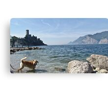 lake whit dog Canvas Print