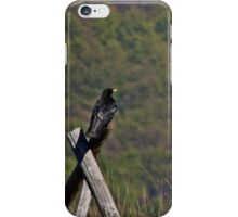crow on a fence  iPhone Case/Skin