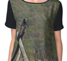 crow on a fence  Chiffon Top