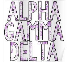 Alpha Gamma Delta Poster