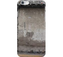Old Window and Gate iPhone Case/Skin