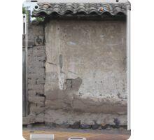 Old Window and Gate iPad Case/Skin