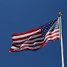 Stars and Stripes 10 by marybedy