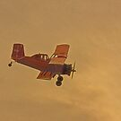 Crop Duster  by Buckwhite