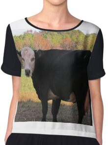 White Face Cow Chiffon Top
