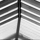 Skylight Abstract 10 BW by marybedy