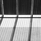 Skylight Abstract 9 BW by marybedy