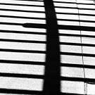 Pergola Shadow by marybedy
