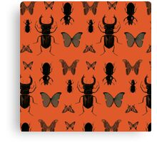 Orange bugs Canvas Print