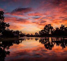 Pink Sunset by Tamara Mason