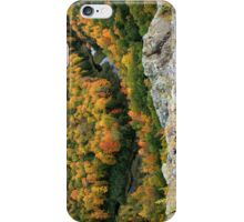 Autumn Ablaze in the Carp River Valley iPhone Case/Skin