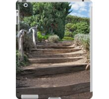 Ties Into Steps iPad Case/Skin