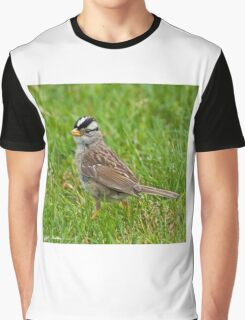 White Crowned Sparrow Graphic T-Shirt