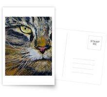 Norwegian Forest Cat Postcards