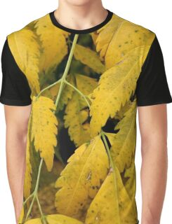 Wisteria Leaves in the Fall Graphic T-Shirt