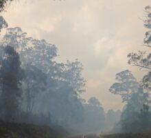Bushfire, Boco Siding, Tasmania, Australia (3) Sticker
