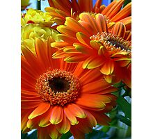Flowers from my date - Photography Photographic Print