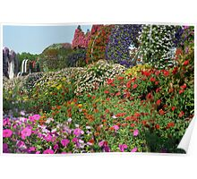Beautiful colorful park with many flower arrangements. Poster