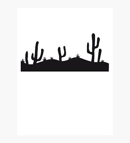 landscape pattern desert evening night sunset sunrise kakten cactus hot hot Photographic Print