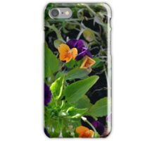 Flowers with orange and purple petals in pots. iPhone Case/Skin