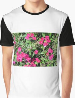 Beautiful pink flowers in the garden. Natural background. Graphic T-Shirt