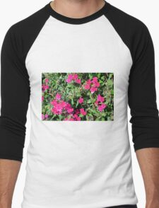 Beautiful pink flowers in the garden. Natural background. Men's Baseball ¾ T-Shirt