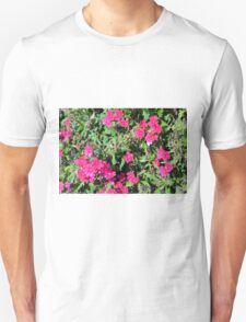 Beautiful pink flowers in the garden. Natural background. Unisex T-Shirt