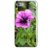 Beautiful purple flowers in the garden. Natural background. iPhone Case/Skin