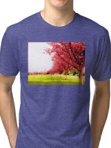 Hananoki Tri-blend T-Shirt