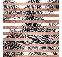 Trendy tropical palm trees chic rose gold stripes Photographic Print