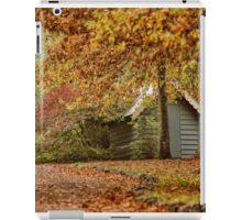 Autumn Wonderland iPad Case/Skin