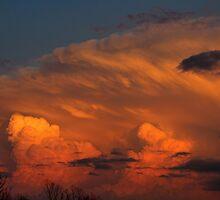 Cloud 20150361 by Carolyn  Fletcher