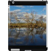 The river bank iPad Case/Skin
