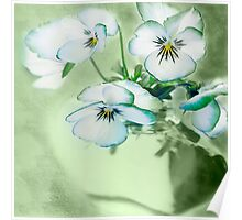 Purple White Violet Floral Flowers Glass Vase Flower Poster